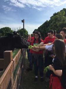 Best Buddies visit La Ventana farm