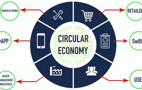 Get Rollin' – The Benefits of a Circular Economy