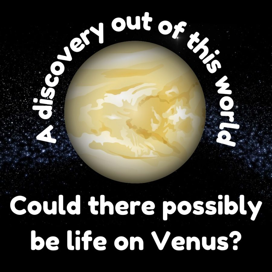 A discovery out of this world: there might be life on Venus