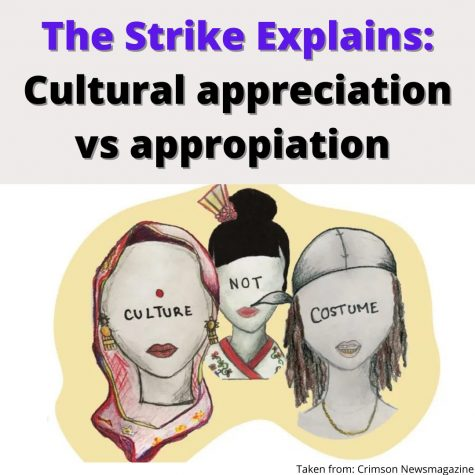 The Strike Explains: Cultural Appropriation v. Appreciation